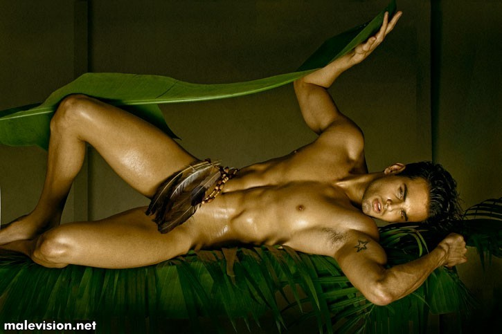 Jungle Fever by David Vance